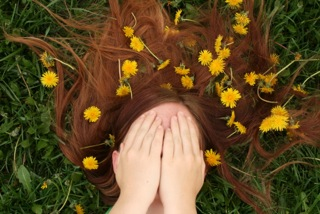 Delaney in Dandelions